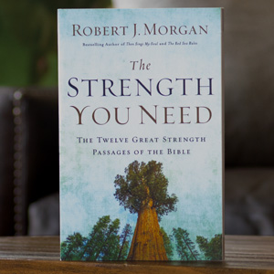 The Strength You Need Book